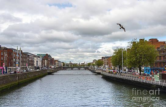 Svetlana Sewell - Dublin