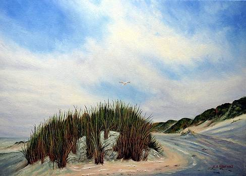 Dune in winter by Andries Hartholt