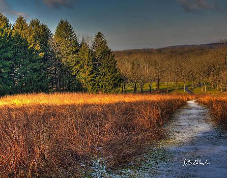 Early Winter 1 by IB Ehrlich