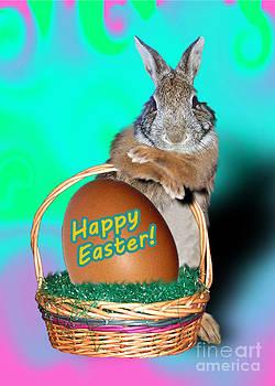 Jeanette K - Easter Bunny Rabbit