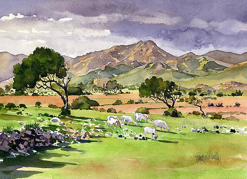 El Valle de Rodalquilar by Margaret Merry