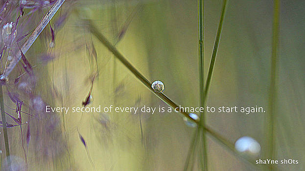 Every Second by Shayne Johnson Fleming