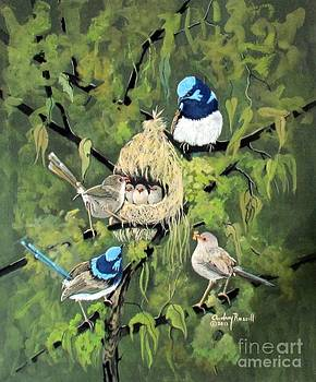 Fairy wrens with fledglings by Audrey Russill