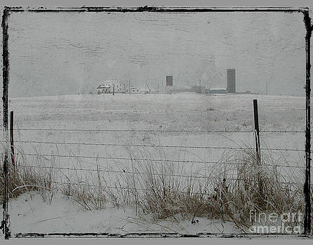 Farmstead by Jim Wright