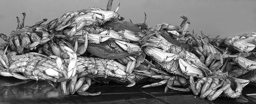 Fishermans Wharf by Ken Reardon