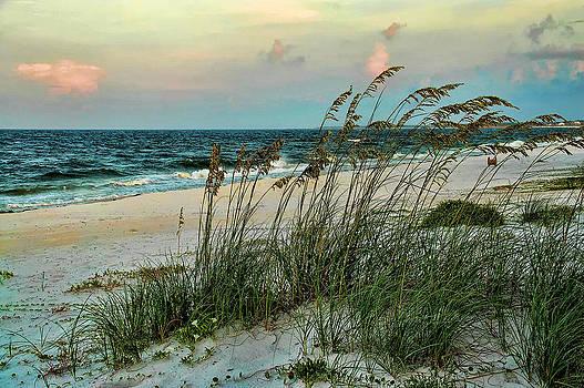 Florida Gulf Coast by Janet Maloy