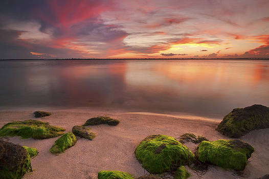 Florida Sunset by Chad Ward