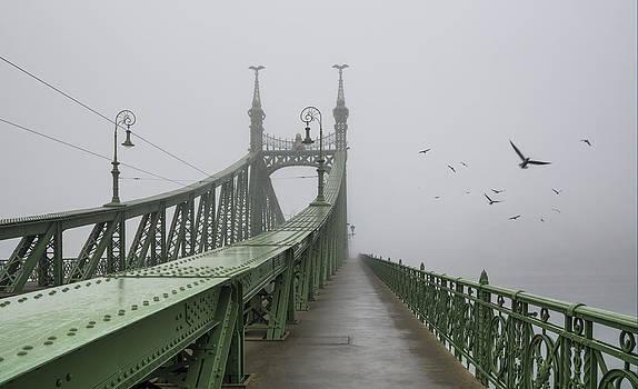 Foggy day in Budapest by Ayhan Altun