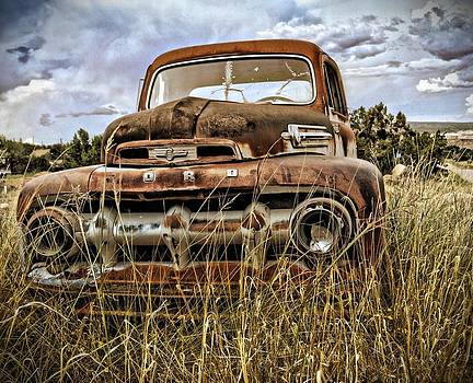 Ford by Gia Marie Houck