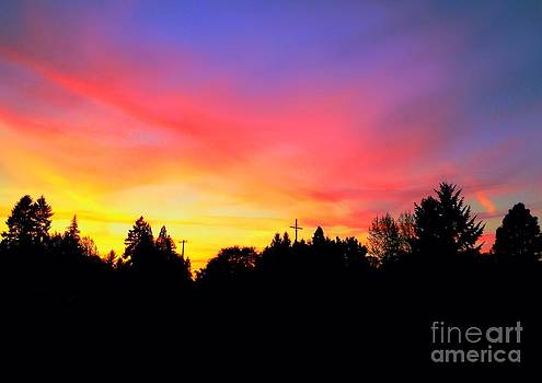 Nick Gustafson - Forest Grove Sunset