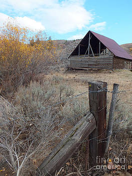 Forgotten Barn by Kimberly Maiden