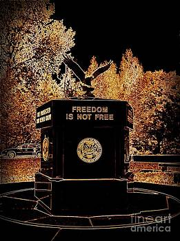 Freedom is Not Free by Kelly Awad
