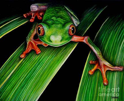 Frog by Tylir Wisdom