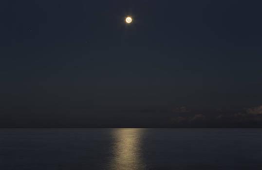 Full Moon Reflections  by Alfredo Rougouski