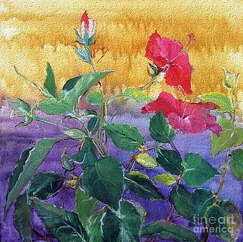 Andrea Kollo - Garden Delight