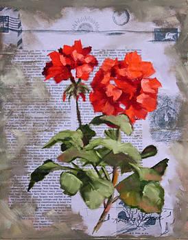 Geranium Beauty  by Rosie Morgan