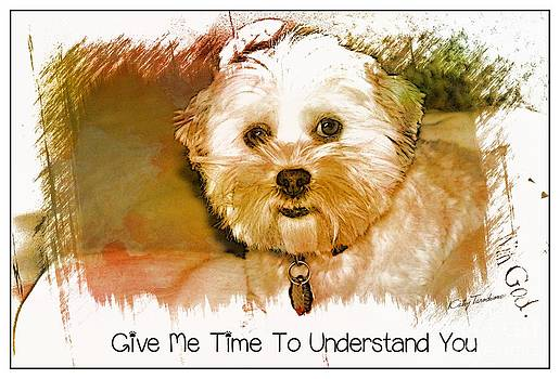 Give Me Time To Understand You by Kathy Tarochione