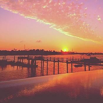 Goodnight Sun by Ariane Moshayedi