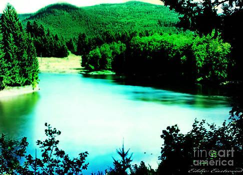 Gorge Waterway Victoria British Columbia by Eddie Eastwood