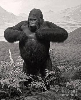 Gregory Dyer - Gorilla