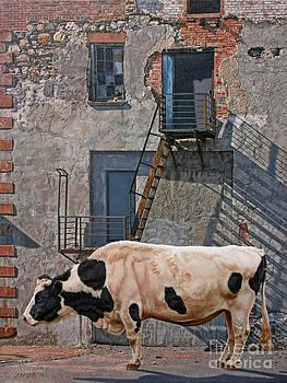 Got Methane by Stephen Shub