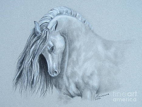 Grey Horse by Laurianna Taylor
