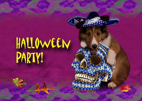 Jeanette K - Halloween Party Sheltie Puppy