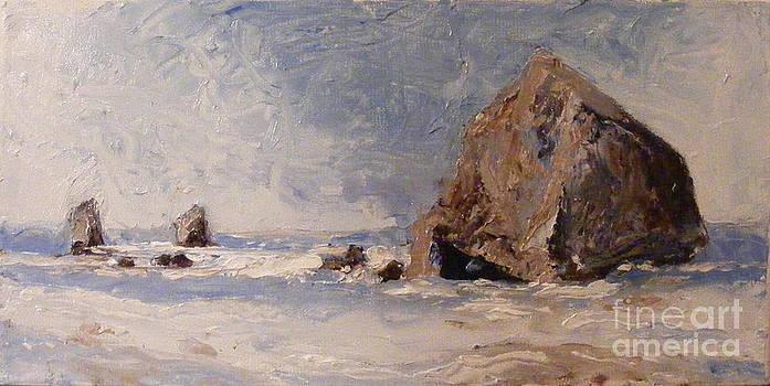Haystack Rock by Steve Patton