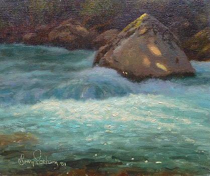 Terry Perham - Holyford Water