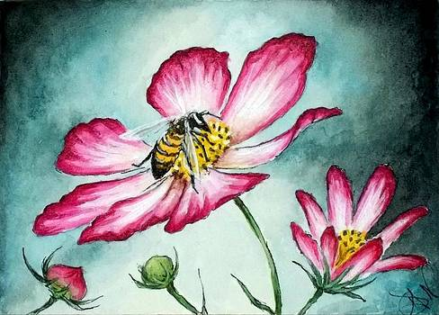 Honey Bee on Cosmo Flower by Debrah Nelson