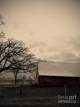 Horse Barn in Red  by Garren Zanker