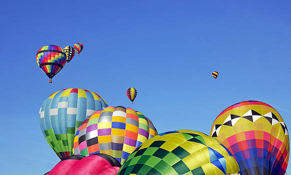 Hot Air Balloons by Cheryl Cencich