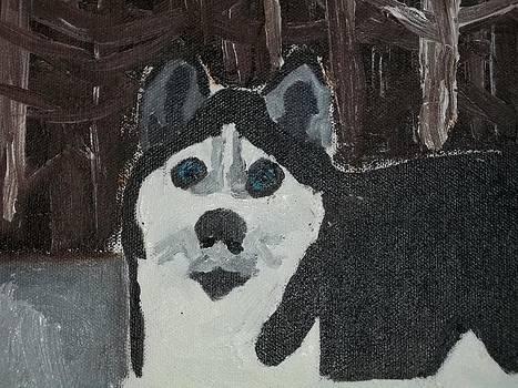 Husky Oil Painting by William Sahir House