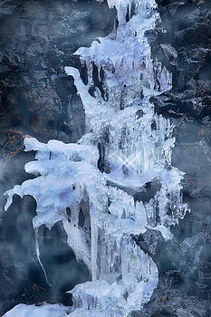 Ice Sculpture by Yuri Lev