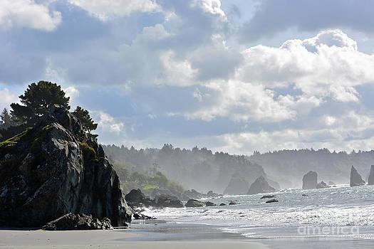 Indian Beach Maze by Gale Cochran-Smith