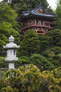 Adam Romanowicz - Japanese Tea Garden Golden Gate Park