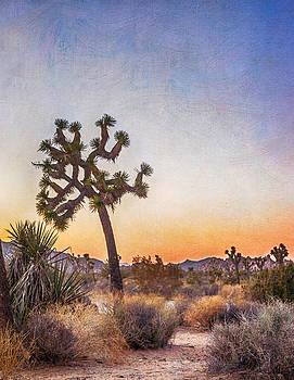 Joshua Tree 19 by Janice Sullivan