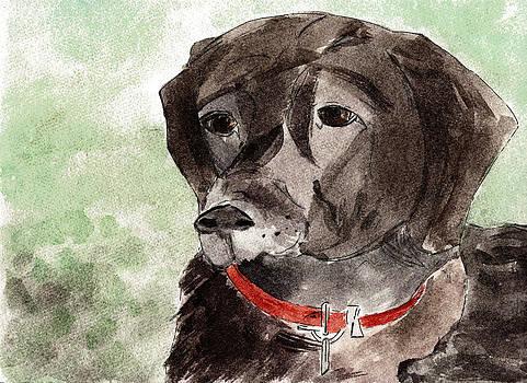 Labrador Retriever by Elizabeth Briggs