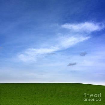 BERNARD JAUBERT - Landscape