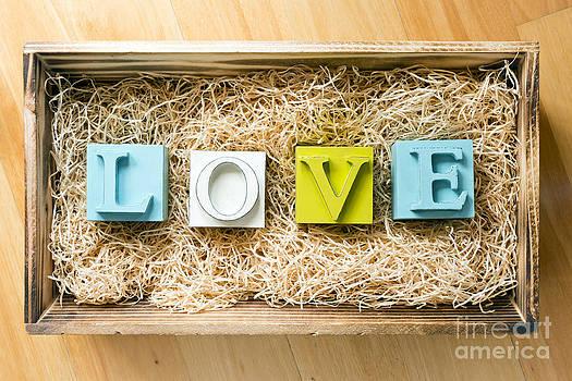 Tim Hester - Love Letters