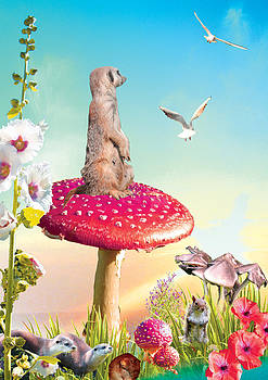 Meercat on a Mushroom by Emily Campbell