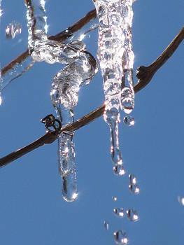 Alfred Ng - melting icicle