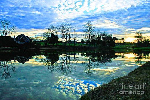 Mirror Image by Jinx Farmer