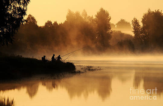 Morning fog by Arvydas Kantautas