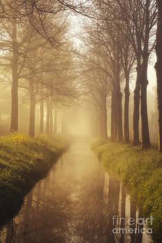 LHJB Photography - Morning light