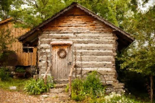 Mountain Cabin by Paul Bartoszek