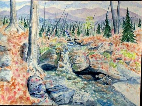 Mountain Stream by Craig Calabrese
