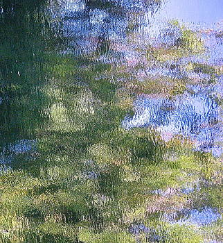 MUD CREEK Reflection by Wendell Lowe