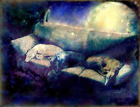 YoMamaBird Rhonda - Nap Time Dreams