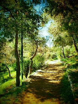 Nice pathway  by Constantinos Charalampopoulos